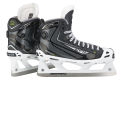 Patins Glace